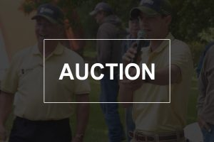 Sutton Auction