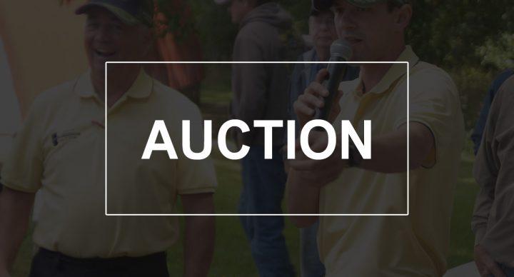 Sutton Auction